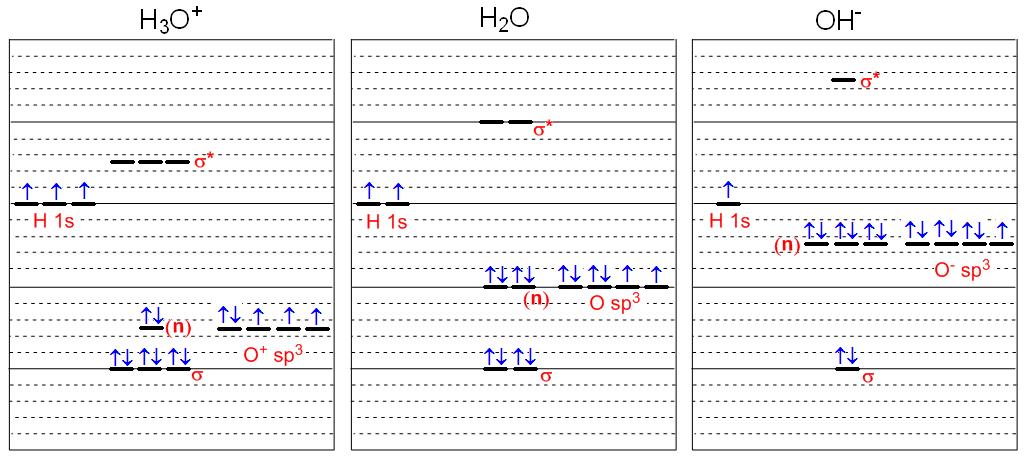CHEM 492 - Water, Hydronium & Hydroxide